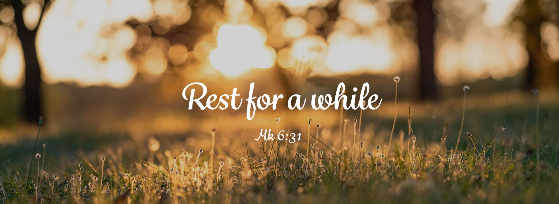 Sixteenth Sunday in Ordinary Time (18th July 2021)