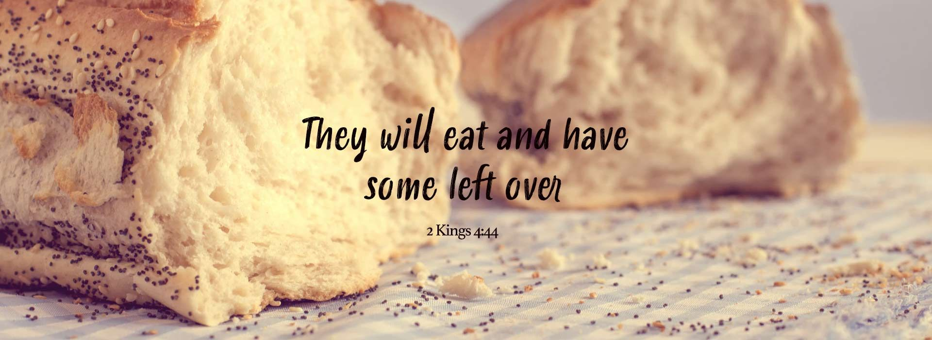 Seventeenth Sunday in Ordinary Time (25th July 2021)