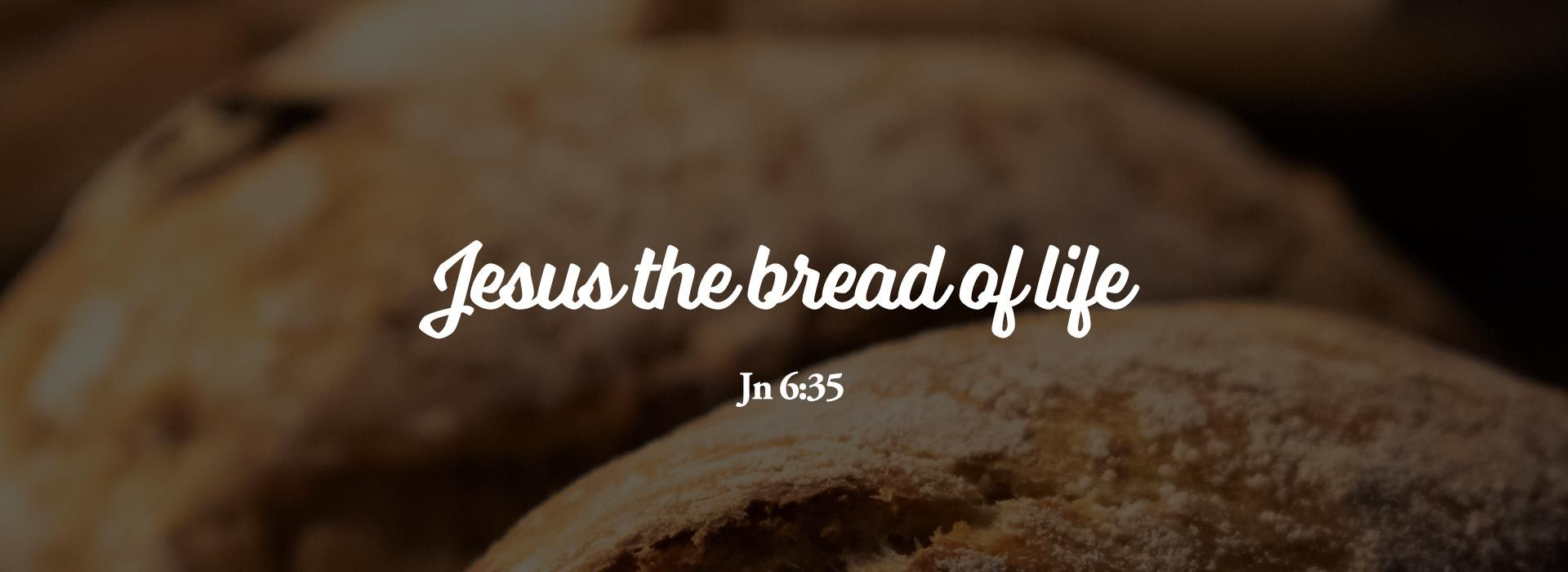 Eighteenth Sunday in Ordinary Time (1st August 2021)